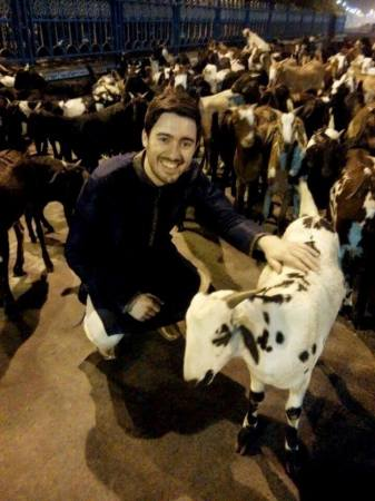 Lewis and his goat friends in Kolkata, India.
