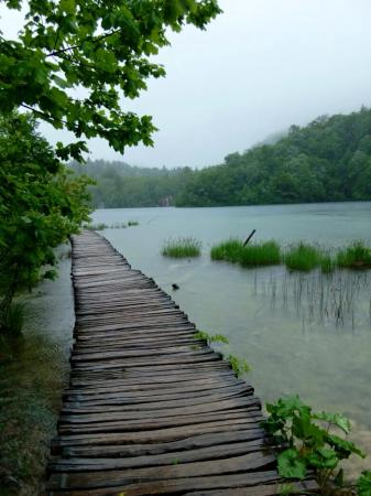 Flooded path, Plitvice Lakes, Croatia.